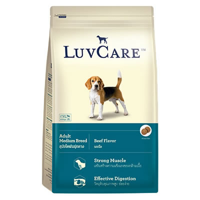 LuvCare - Adult Medium Breed Beef Flavor