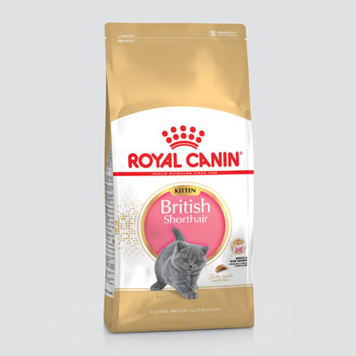 Royal Canin - British Shorthair - Kitten
